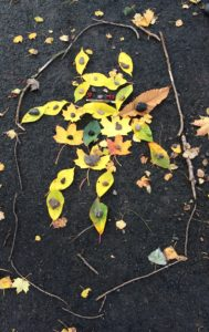 Goldsworthy - Pikachu
